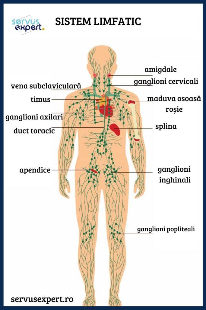 ganglioni limfatici umflați de pierdere în greutate severă