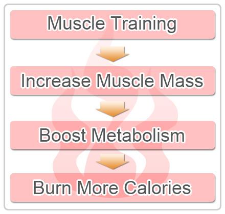 scăderea în greutate ritm metabolic centrul de slabire