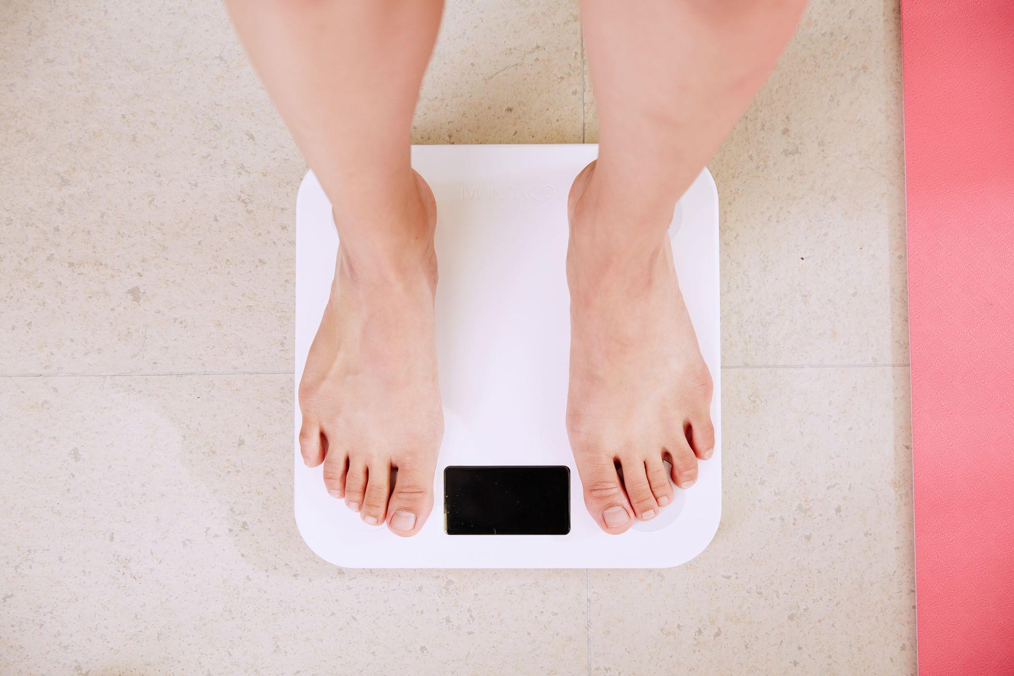 stadiile timpurii ale pierderii de grăsime cea mai bună metodă de a pierde în greutate la 46 de ani