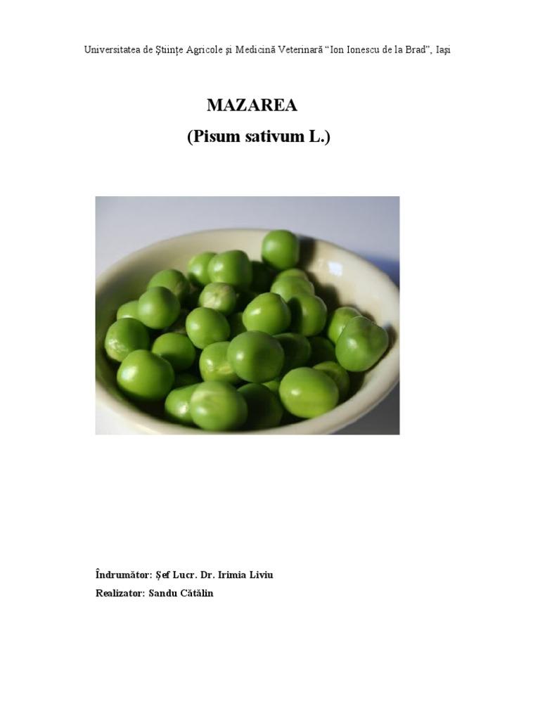 Mazarea cultivata in sistem ecologic