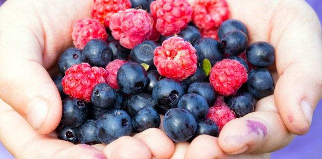 fructe de pădure bune pentru pierderea în greutate