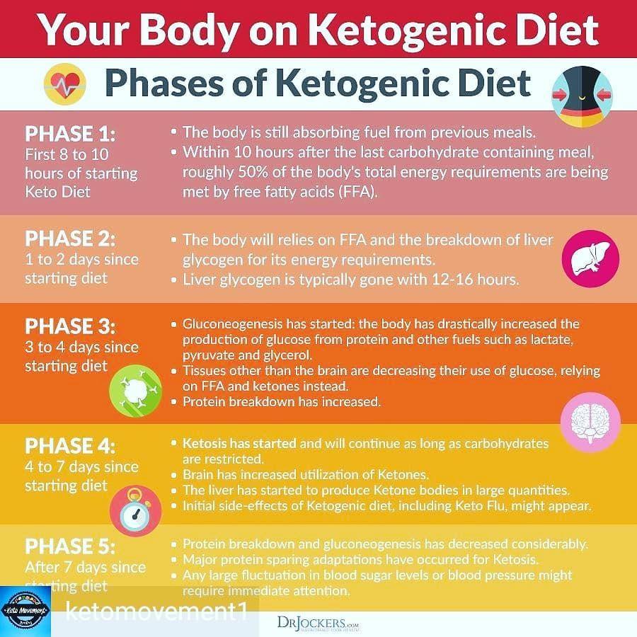 pierdere în greutate metabolică shreveport la modalități ușoare de a slăbi sănătos