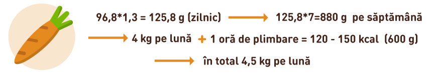 b6 împușcături pentru pierderea în greutate foi de calcul pentru pierderea în greutate