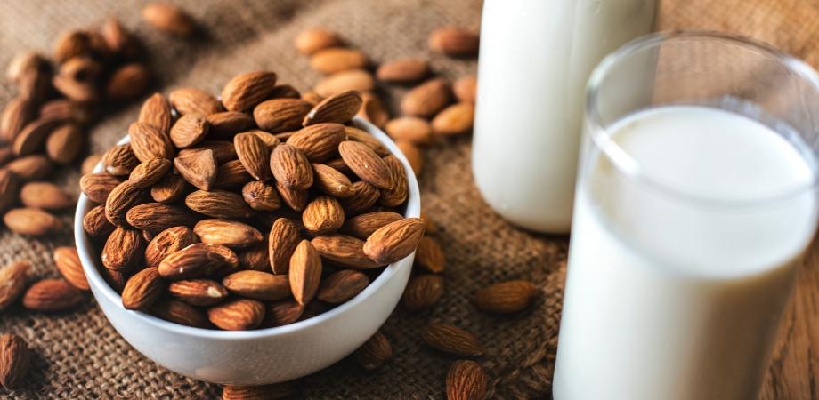 Ce contine multi slim, Paleo dieta pašalina baltymų kokteilius - poilsiavieteasveja.lt