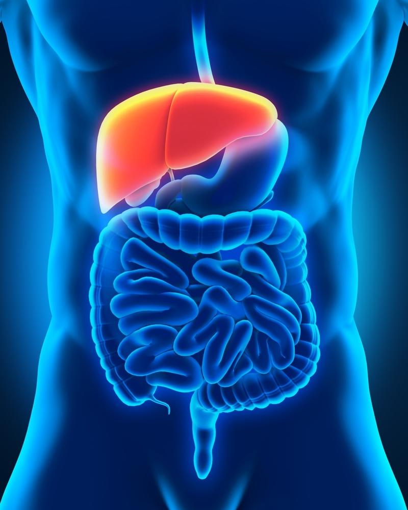 cum să elimini toxinele din celulele grase