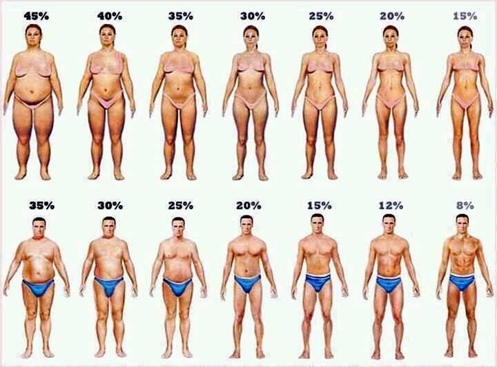 pierde in greutate mai mica grasime corporala