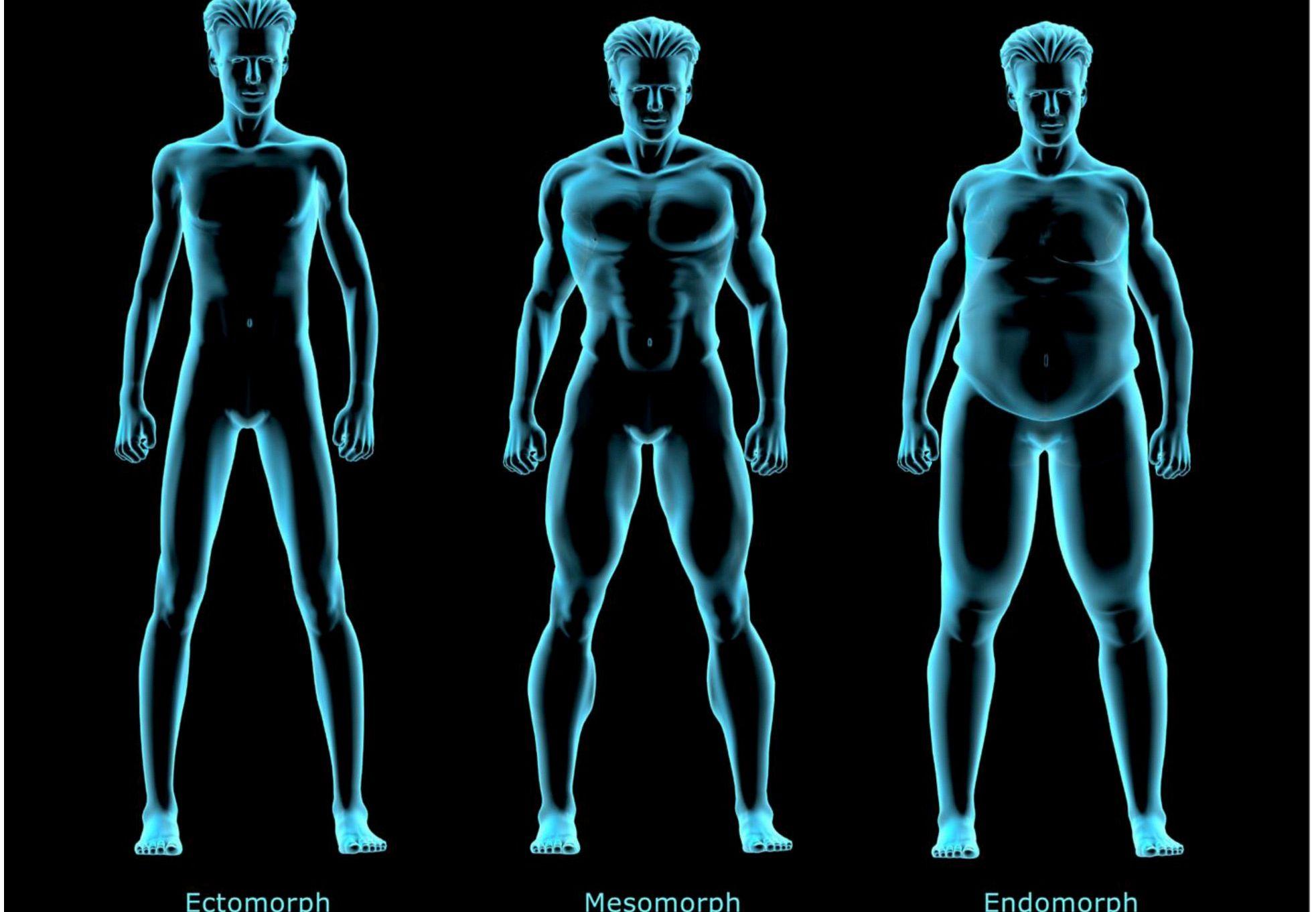 tipul de corp vs pierderea de grăsime pierderea în greutate alte simptome